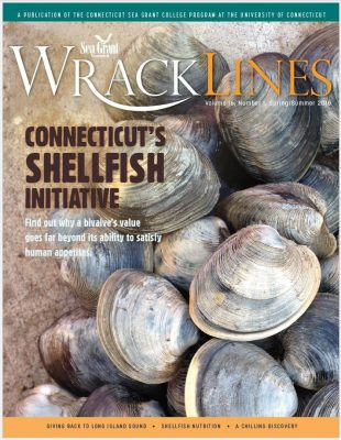 Wrack Lines 16-01 cover