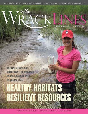 Wrack Lines 16-2 cover