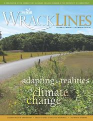 Wrack Lines 13-02 cover