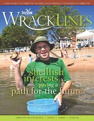 Wrack Lines 14-01 cover