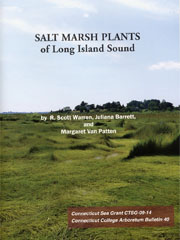 Salt_marsh_plants_LIS