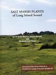Salt_marsh_plants_LIS