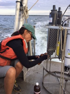 Prof. Penny Vlahos fills a sample bottle with water from Long Island Sound.