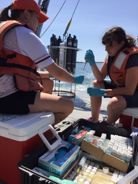 Marine sciences students fill sample bottles with water from Long Island Sound collected during an Aug. 24 research cruise.