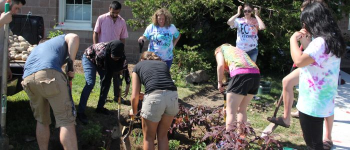 Research Coordinator Syma Ebbin, center, works with students in the EcoHusky Club planting a rain garden at UConn Avery Point on Sept. 15.