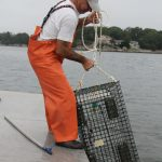 New report highlights impacts on seafood industry