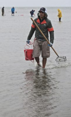 About 100 people turned out for the annual clamming clinic sponsored by the Fairfield Shellfish Commission on May 19.