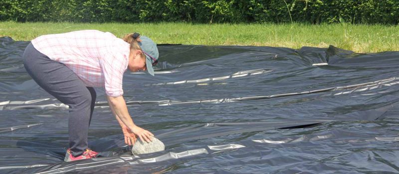 Juliana Barrett of CT Sea Grant anchors a plastic sheet placed over a former garden area at Dodge Paddock in Stonington on June 18. The plastic will remain through the summer to prepare the site for native grasses.