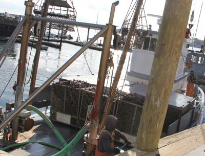 A boatload of oysters is tied up to the docks at Norm Bloom & Son Oysters in Norwalk.