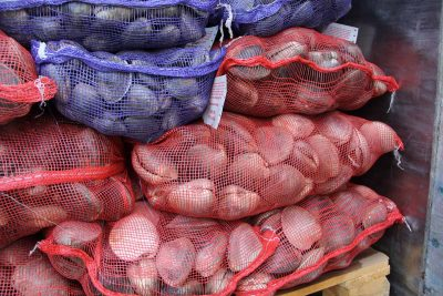 Bags of clams harvested by Atlantic Clam Farms in Greenwich await delivery to restaurants and fish markets.