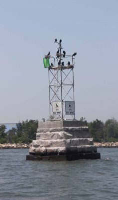 Cormorants gather on a channel marker in Norwalk harbor.