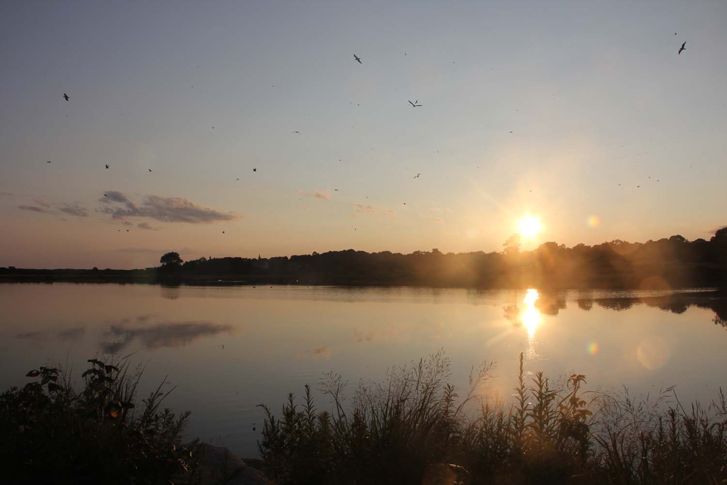 The sun sets over Goshen Pond, a tidal marsh in Waterford, on Aug. 22.
