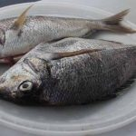 Whole scup, also called porgy, are abundant in local waters.