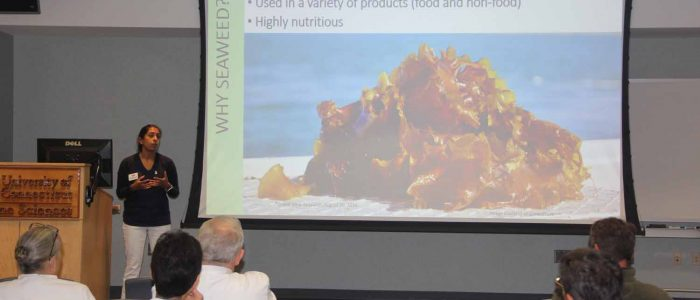 Anoushka Concepcion of CT Sea Grant gives an overview of the seaweed industry during a workshop for kelp growers and chefs.