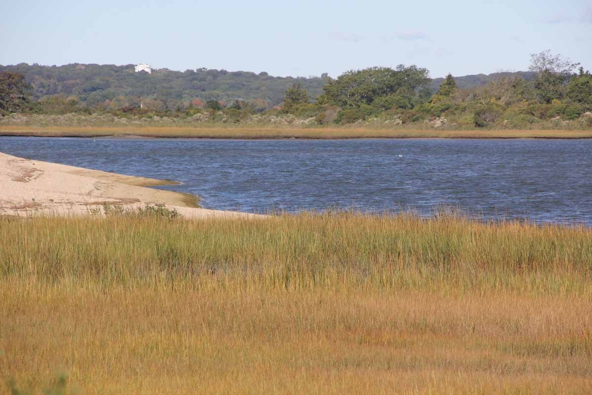 The Poquonnock River flows past salt marshes at Bluff Point State Park.
