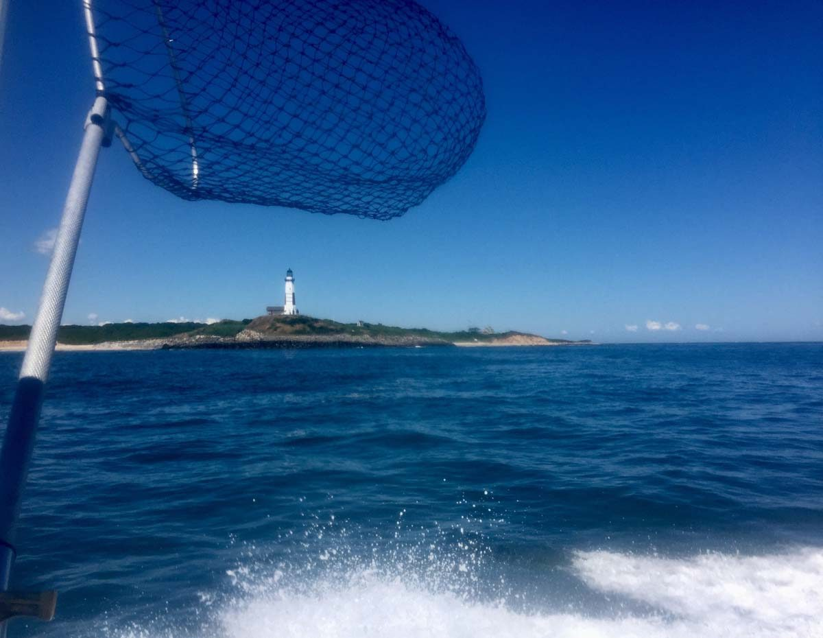 This scene from a fishing boat near Montauk last summer was captured by David Bednarz of Ledyard.