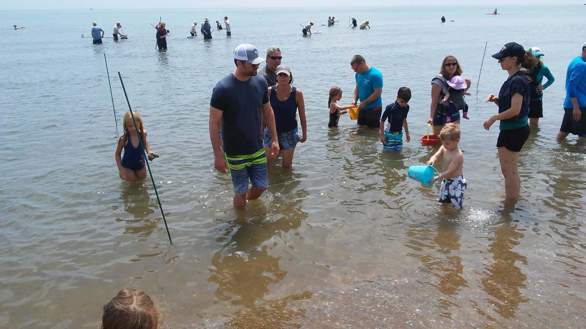 Children and their parents enjoying clamming during the Madison Shellfish Commission's annual spring clam dig are shown in this photo by Kevin Clark of Madison.