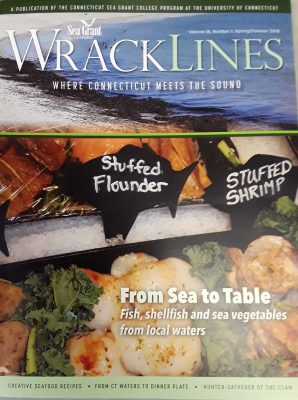 Cover of Wrack Lines magazine, Spring-Summer 2018