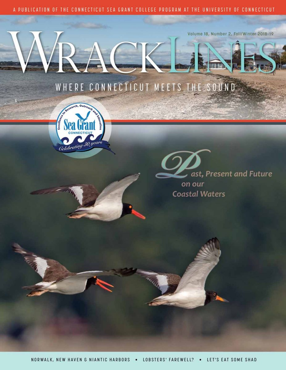 Fall/Winter 2018-19 Wrack Lines magazine cover: Past, Present and Future on our Coastal Waters.