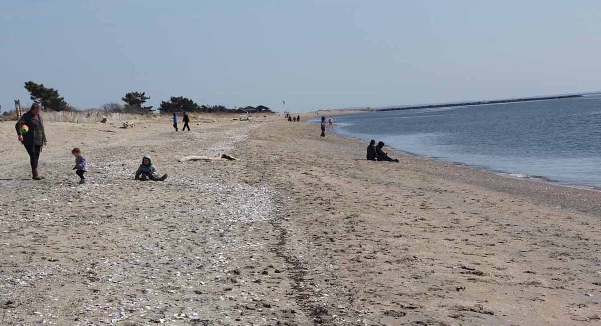 Dozens of families and others enjoyed Hammonassett Beach State Park on the first day of spring March 20.