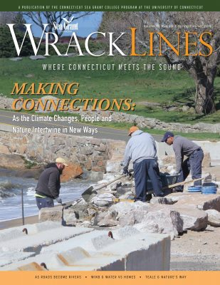 Cover of Wrack Lines magazine, Spring-Summer 2019