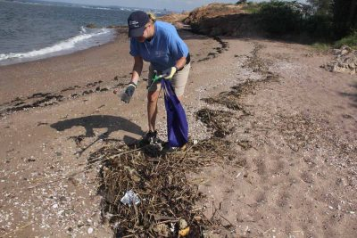 Karri Beauton, an animal rescue volunteer at Mystic Aquarium, picked several empty plastic bottles during the beach cleanup at Lighthouse Point Park in New Haven on Aug. 8. Judy Benson / Connecticut Sea Grant