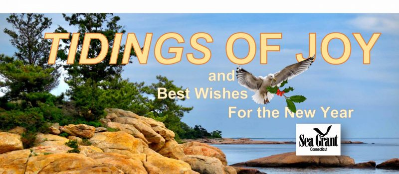 2019 holiday card from Connecticut Sea Grant