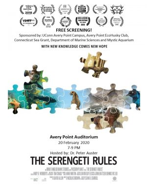 "Poster for screening of the film ""The Serengeti Rules"" at UConn Avery Point on Feb. 20"