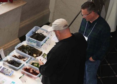 Participants in the National Seaweed Symposium examine samples of seaweeds grown in Maine during the Seaweed Showcase.