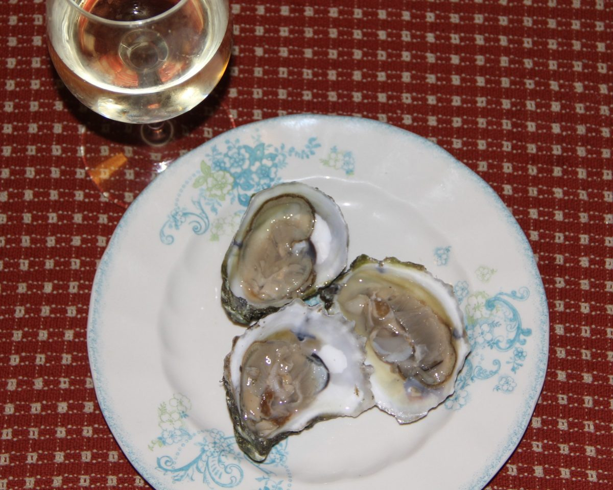 Fresh oysters on a plate