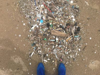 Concern is mounting over the impacts of microplastics in our waters. Recent NYSG research examined the potential impacts microplastics can have on the aquatic food chain in Lake Ontario.