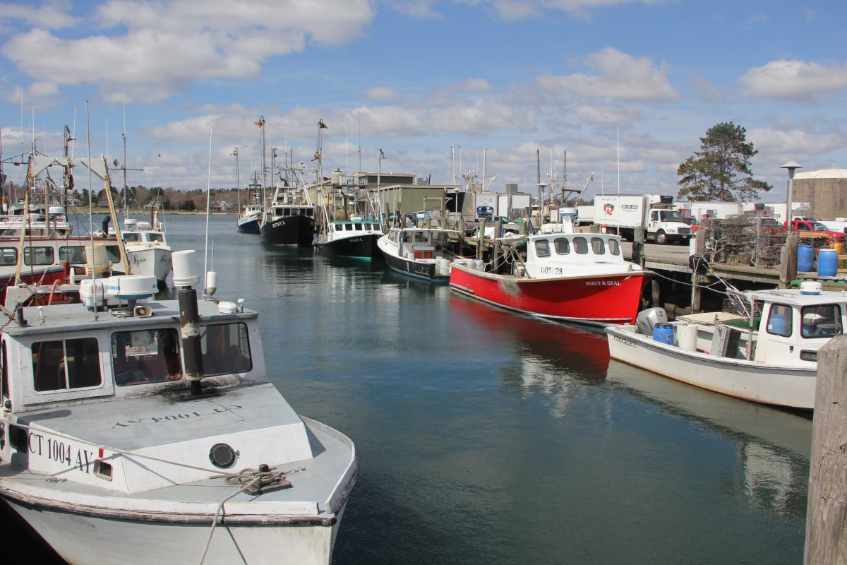 Commercial fishing boats are tied up along Stonington Town Dock on a late March afternoon.