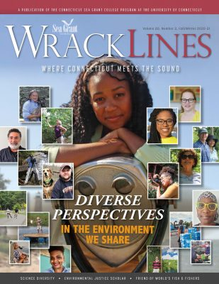 Cover of Spring-Summer 2020 issue of Wrack Lines