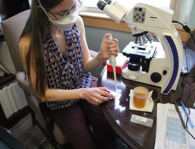 Van Gulick prepares a sample for examination under the microscope.