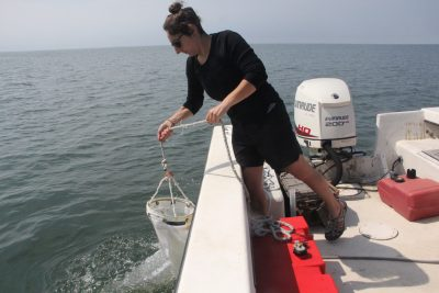 Russo hauls in the plankton net after collecting the water sample.