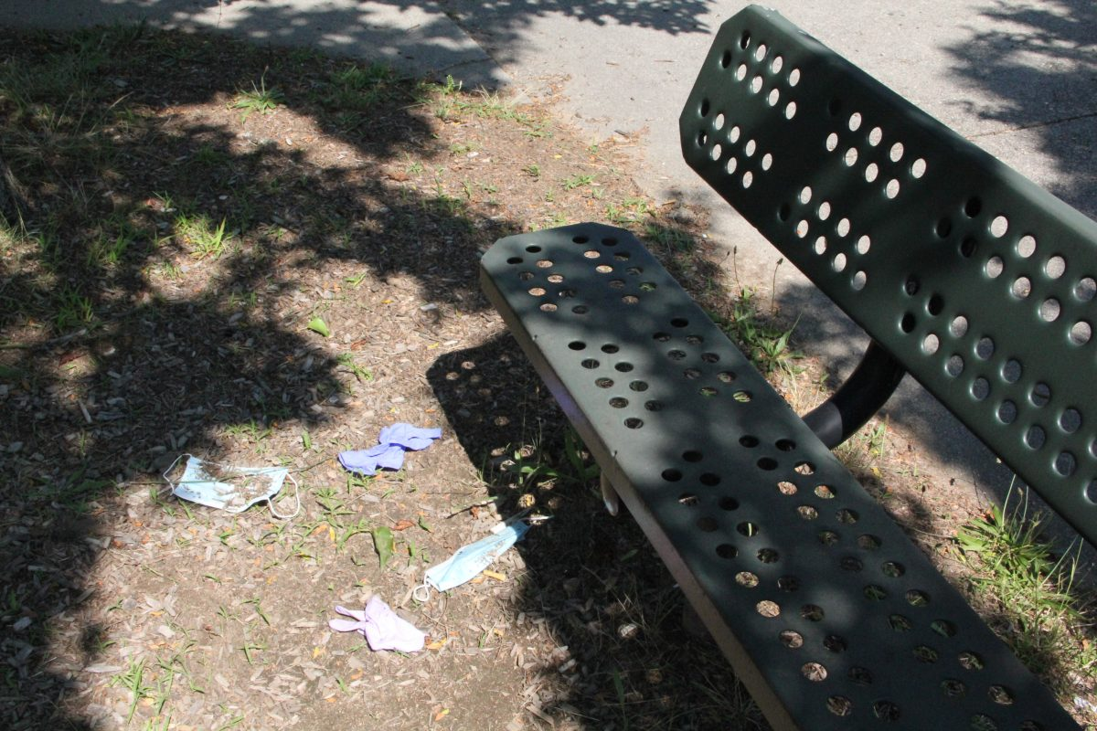 Discarded face masks and gloves lie on the ground near a park bench this summer.