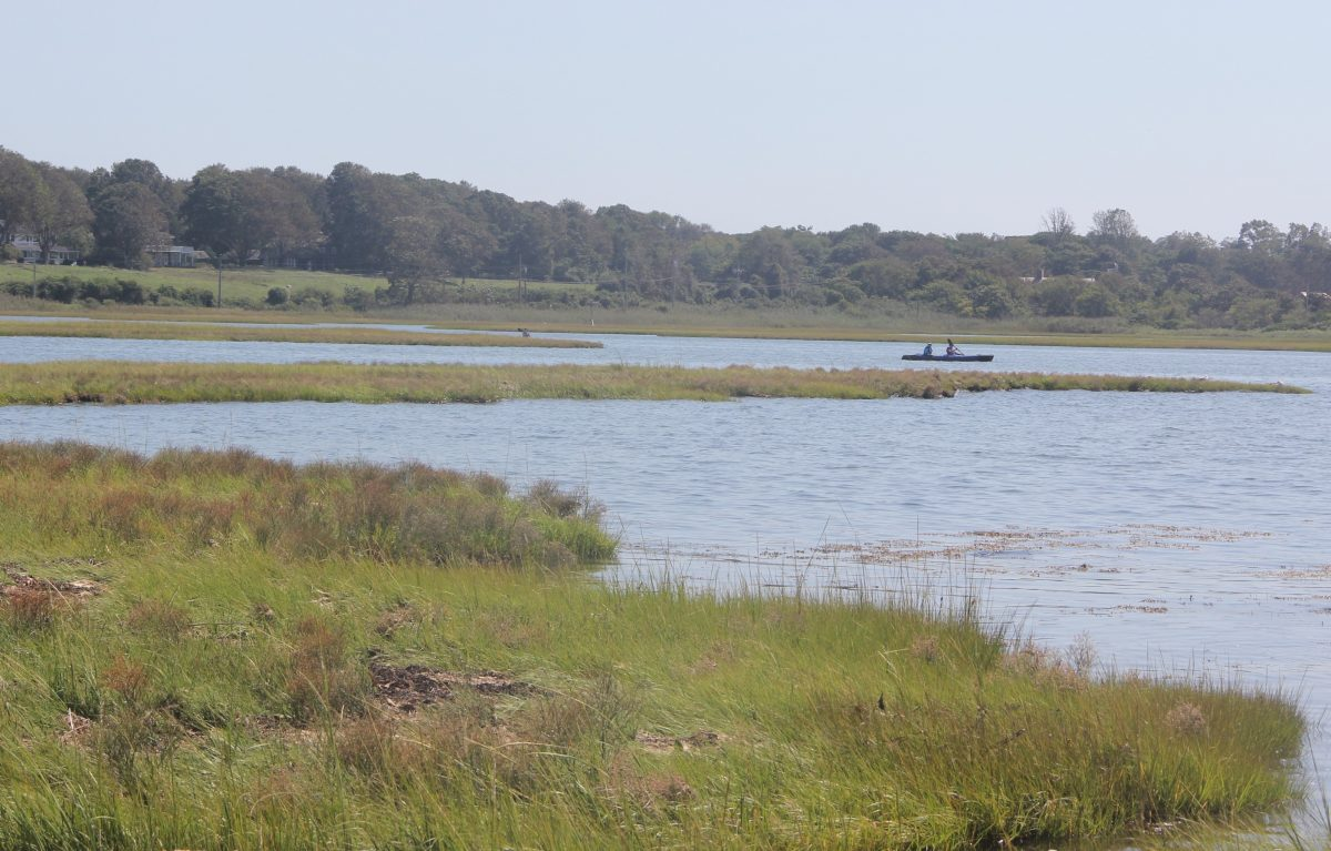 Kayakers paddle through Pattagansett Marsh in East Lyme.