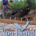 Cover of CT Sea Grant 2020 Annual Report
