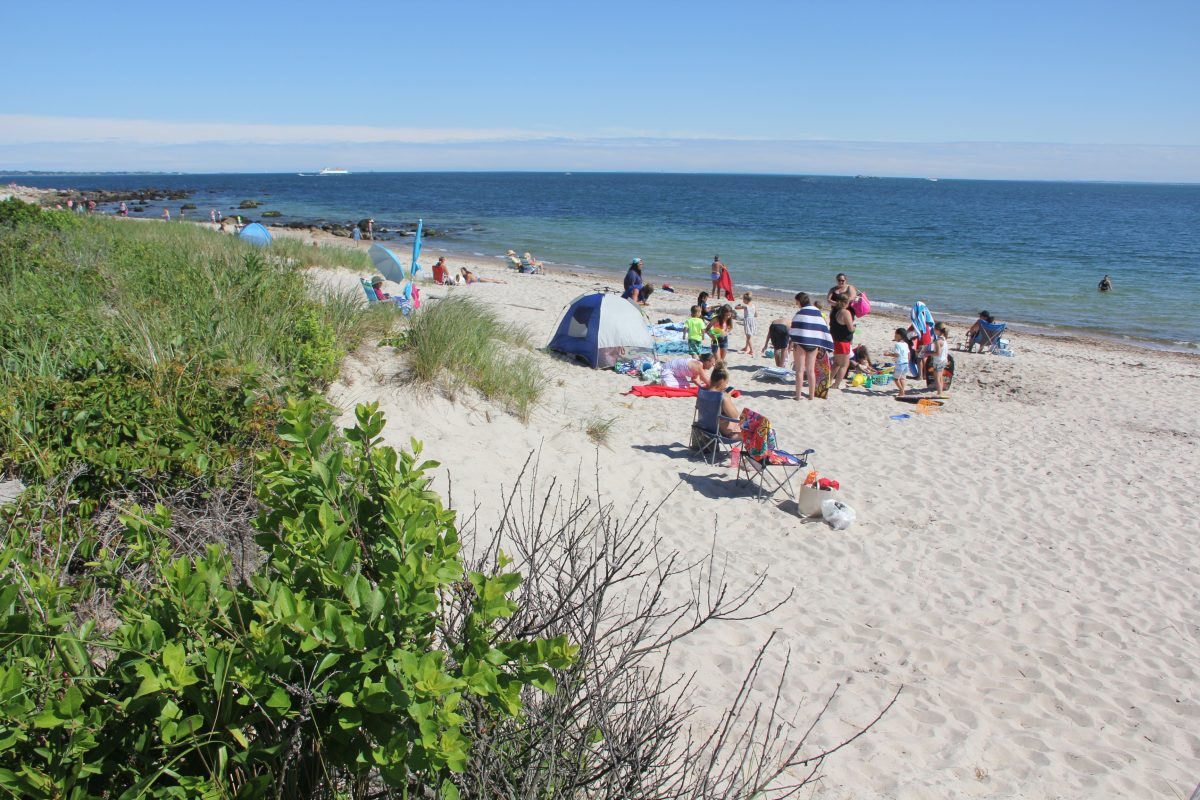 Dunes and the grasses and other vegetation like that adjacent to the beach at Harkness Memorial State Park in Waterford would be factored into the tool that will be developed by CT Sea Grant Marine and Coastal Economics Fellow Ethan Addicott.