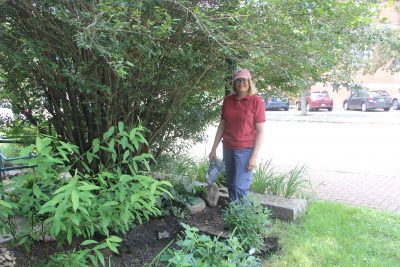 Sue Augustyniak built this rain garden on the property of of the William A. Buckingham Memorial as her service project for the Coastal Certificate Program.