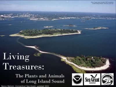 """Cover image of """"Living Treasures: The Plants and Animals of Long Island Sound"""" PowerPoint"""